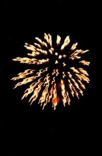 Salute_2002_avatar.jpg