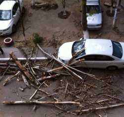 В Астрахани и области ураган переворачивает остановки, валит деревья и оставляет людей без света