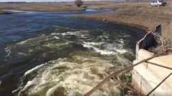Астраханцы могут остаться без рыбалки и рыбы