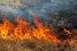 На территории Астраханской области сохраняется высокая пожароопасность