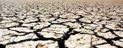 В Астраханской области засуха достигла опасных критериев