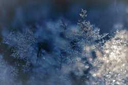 Мороз до -15 градусов ожидается в Астраханской области