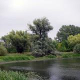 image390